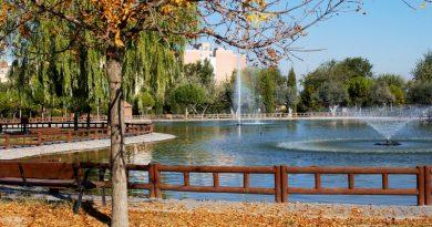 Nuevo sistema para mejorar el estado de los lagos del parque España