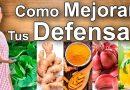Alimentos que refuerzan el sistema inmunológico