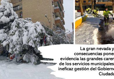 La gran nevada  y la ineficaz gestión